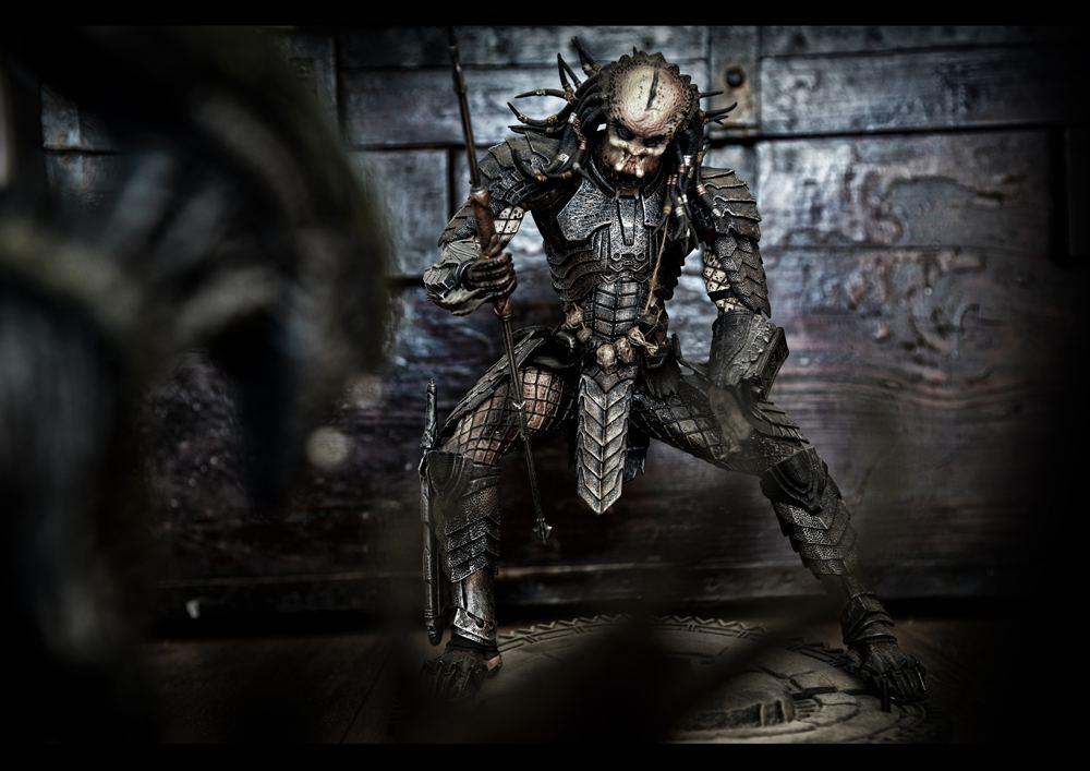 12 - predator